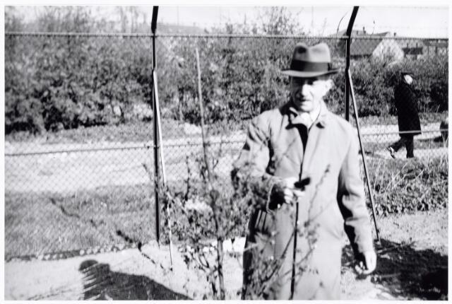 038623 - Volt. Zuid. Groenstraat. 1938.Ontspanning. Zo te zien hanteert de man op de foto hier de snoeischaar al bij de aanleg van het park voor en door personeel van Volt. Na 1958 werd dit terrein volgebouwd.