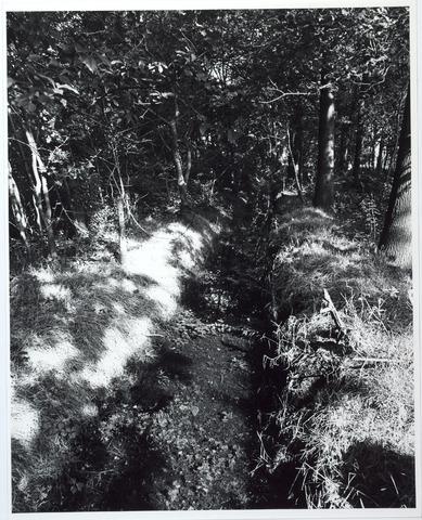 015434 - Landschap. Fase I de Blaak