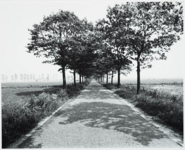 025414 - Langendijk in juni 1977