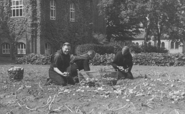 105290 - Monnikenleven Werkzaamheden op het land. Aardappels oogstende monniken op het land van de Sint Paulus Abdij. Kloosters. Sint Paulusabdij.