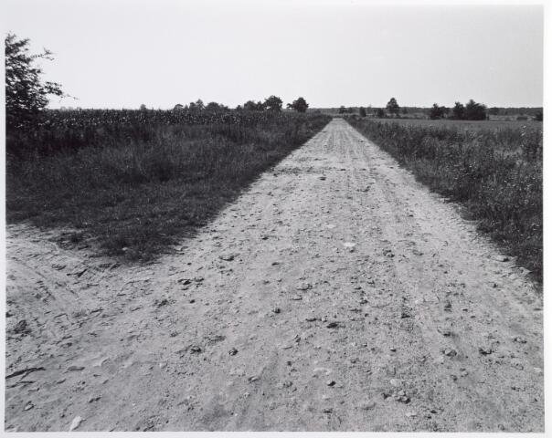 015367 - Landschap. Omgeving van de voormalige spoorlijn Tilburg - Turnhout, in de volksmond ´Bels lijntje´ genoemd