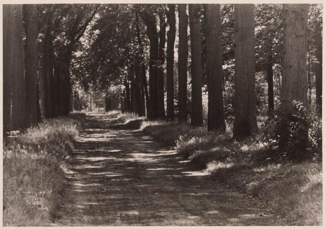 027860 - Oude Warande, Gilzerdreef.
