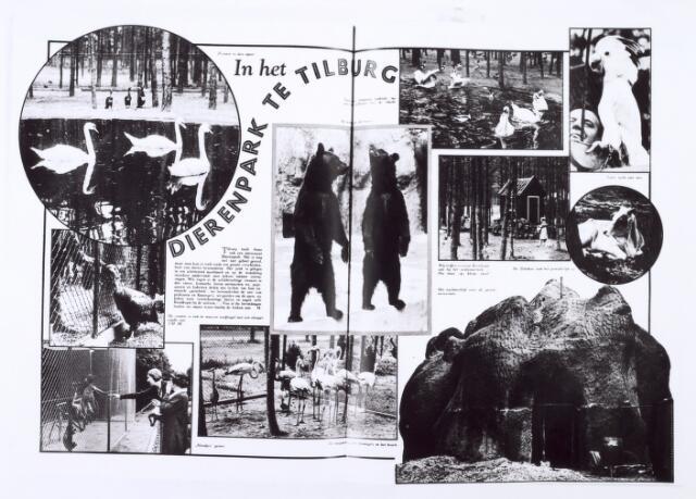 016233 - Dierentuin. Artikel in Ons Zuiden van 12 augustus 1932 naar aanleiding van de opening van het dierenpark aan de Bredaseweg. Oorspronkelijk heette het Burgers Dierenpark en werd later overgenomen door de firma Van Dijk. In augustus 1973 werden de poorten gesloten