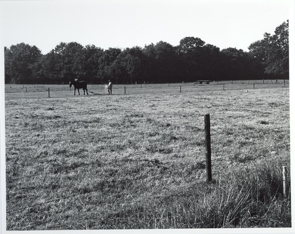 015418 - Landschap. Fase I de Blaak