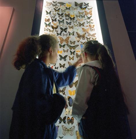 D-000277-3 - Noordbrabants Natuurmuseum, Spoorlaan