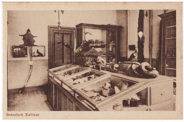 001794 - Onderwijs. Oude Dijk, kweekschool van de zusters van liefde,  'botanisch kabinet'.
