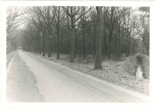 650866 - Gebied waar de latere woonwijk 'De Reeshof' is gebouwd.