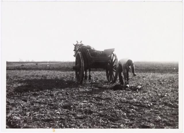 008558 - Boer met mestkar, aan het werk op het land, gefotografeerd door Henri Berssenbrugge (1873-1959), begin 1900.
