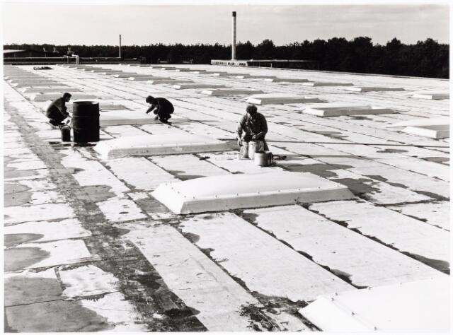 039199 - Volt. Noord. Algemeen, Gebouwen, Nieuwbouw. Het afwerken van het dak van hal ND in 1964.