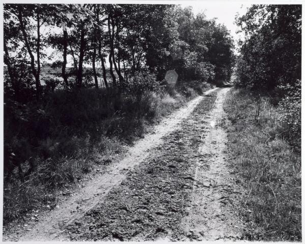 015358 - Landschap. Omgeving van de voormalige spoorlijn Tilburg - Turnhout, in de volksmond ´Bels lijntje´ genoemd