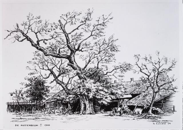 028950 - Tekening. Boerderij De Noteboom  in de President Steijnstraat met notenboom.Door H.Corvers.