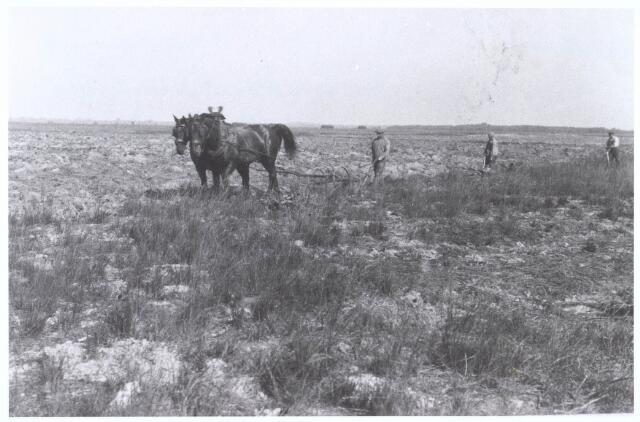 020394 - Landbouwer Nicolaas (Klaas) de Groot geboren 31 oktober 1852,  achter de ploeg met paard op zijn akkers in de Hasselt. Thans ligt hier de rotonde tussen de Ringbaan-West en Ringbaan- Noord.