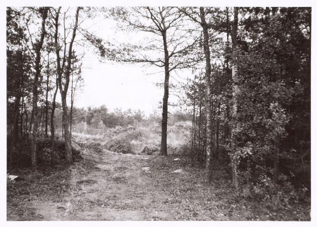017946 - Duijnsbergesweg