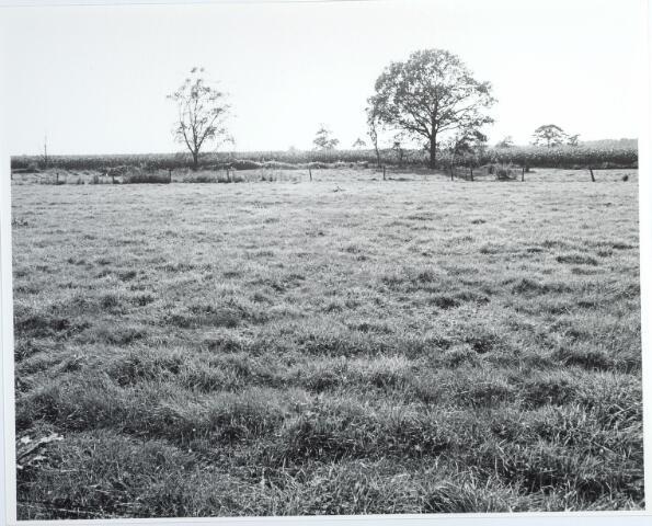 015438 - Landschap. Fase I de Blaak