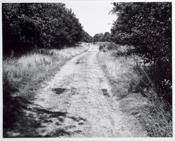 015378 - Landschap. Omgeving van de voormalige spoorlijn Tilburg - Turnhout, in de volksmond ´Bels lijntje´ genoemd