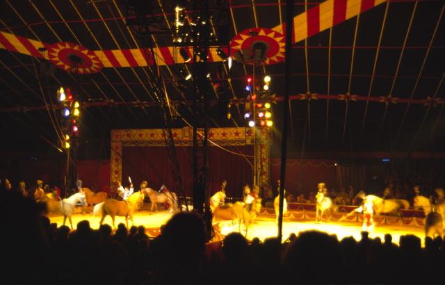 656898 - De piste van American Circus op het Laarveld in Tilburg. Act met paarden.