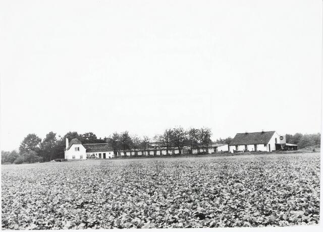 032965 - Proefboerderij Anca aan de Oude Loonsebaan genomen vanaf de Componistenlaan; Anca genaamd naar de ouders van de stichters van de proefboerderij H.v.d. Brekel en Anna Charles v.d. Brekel-v.d. Schoot; na het overlijden van mevrouw v.d. Brekel-v.d. Schoot is de proefboerderij overgenomen door meelfabriek Schraven Eijsbouts.