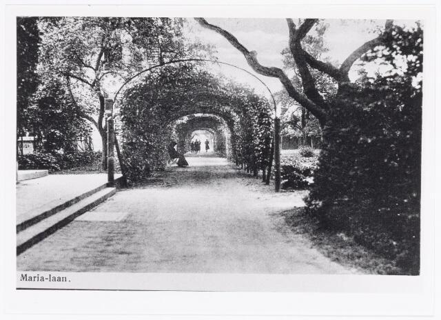 040036 - Marialaan in de tuin van het moederhuis van de zusters van liefde van O.L.V. Moeder van Barmhartigheid aan de Oude Dijk.