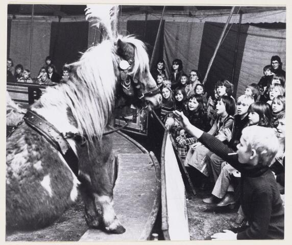101238 - Circus. Jeugdcircus. Safarishow. Paardenact.