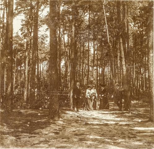 653593 - Mastbosch. Groepsfoto. (Origineel is een stereofoto.)