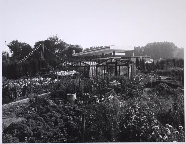 023714 - Volkstuintjes ter hoogte van het Leijpark en de Kempenbaan medio 1979