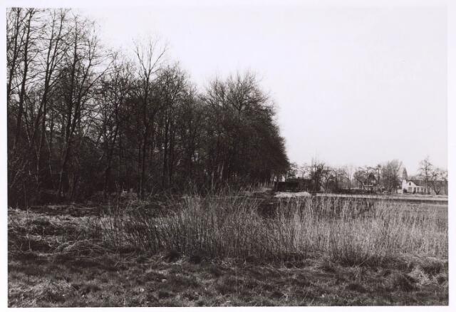 023952 - Ongerepte natuur in de Koningshoeven omstreeks 1975