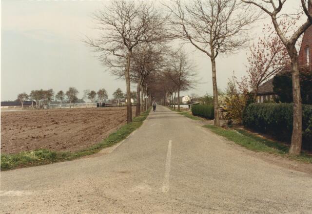 650831 - Gebied waar de latere woonwijk 'De Reeshof' is gebouwd.
