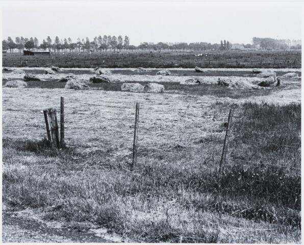 029298 - Reeshofweg