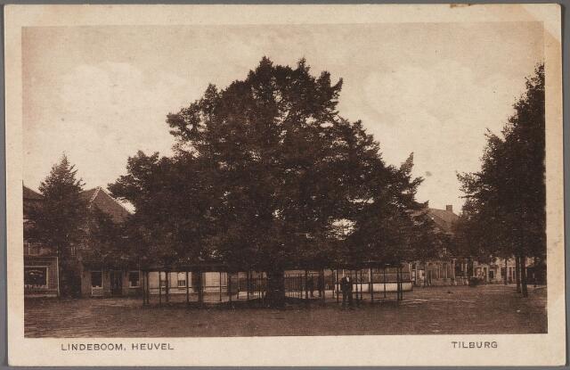 011171 - Heuvel met lindeboom.