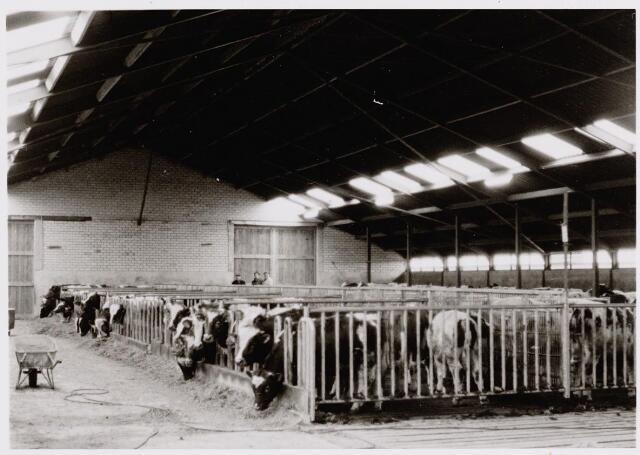 045453 - Stal van een pasgebouwde boerderij in Goirle