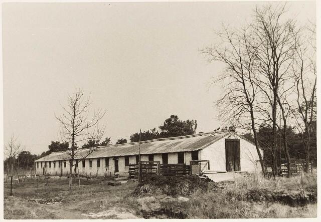 032971 - Varkenshokken behorende bij de proefboerderij aan de Oude Loonse Baan.