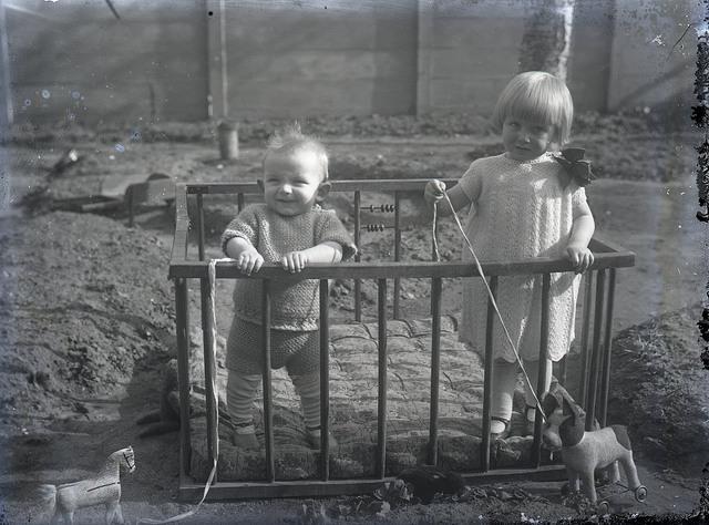 651560 - Twee kinderen in een box met een speelpaardje en speelhondje. De Bont. 1914-1945.