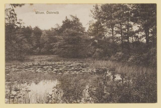 075327 - Serie ansichten over de Oisterwijkse Vennen.  Ven: Witven.