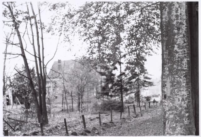 016464 - Stukje bos tussen de panden Bredaseweg 456 en 462