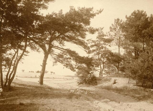 600757 - Landschap in de omgeving van Loon op Zand. Duinen en bossen.Kasteel Loon op Zand. Families Verheyen, Kolfschoten en Van Stratum
