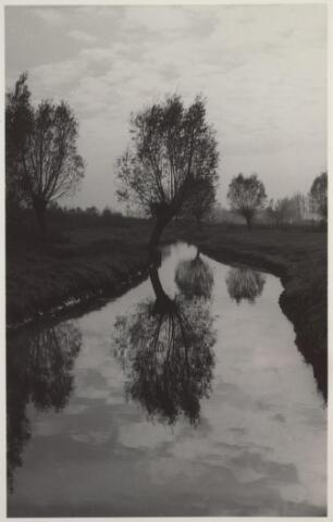025844 - Het riviertje De Leij in 1952