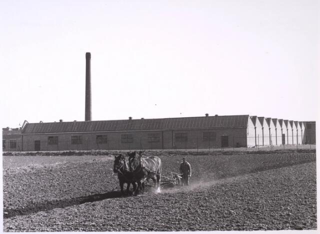 024799 - Textiel. De nieuwe wollenstoffenfabriek van C. Mommers & Co. op een nog landelijk industrieterrein in Tilburg-Noord. De fabriek verhuisde beginjaren '50 van de vorige eeuw vanuit de Goirkestraat naar de Kraaivenstraat en was een van de eerste die zich daar vestigde-. Op de voorgrond een boer die met twee paarden aan het ploegen is.