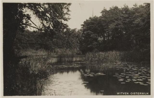 075328 - Serie ansichten over de Oisterwijkse Vennen.  Ven: Witven.