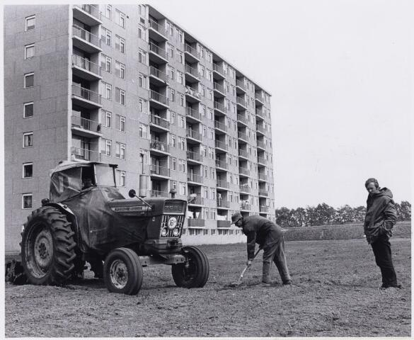 101938 - Groenvoorziening bij de flats in de Van Leeuwenhoeklaan.
