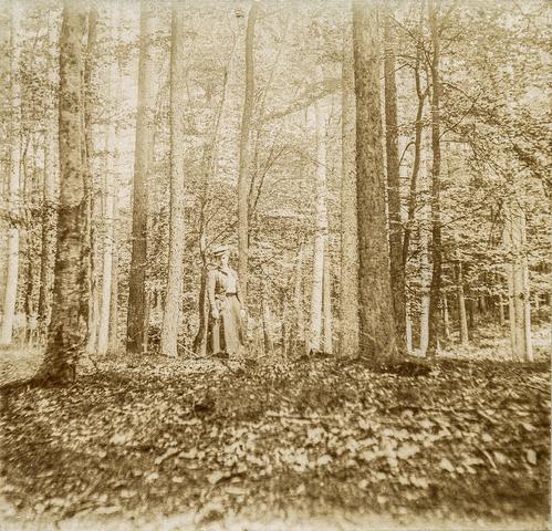 653578 - Foto van persoon in bos. (Origineel is een stereofoto.)