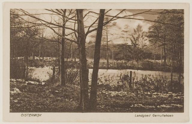 """073704 - Het landgoed """"Gemullehoeken""""gelegen aan de Gemullehoekenweg."""