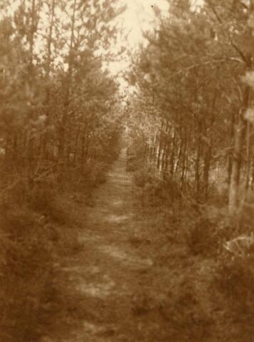600795 - Landschap in de omgeving van Loon op Zand. Duinen en bossen.Kasteel Loon op Zand. Families Verheyen, Kolfschoten en Van Stratum