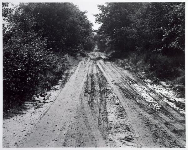 015369 - Landschap. Omgeving van de voormalige spoorlijn Tilburg - Turnhout, in de volksmond ´Bels lijntje´ genoemd