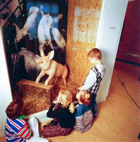 D-000279-2 - Noordbrabants Natuurmuseum, Spoorlaan
