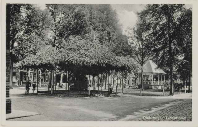 074400 - De oude lindeboom op de Lind te Oisterwijk.