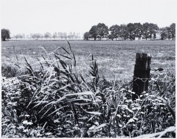 029308 - Reeshofweg