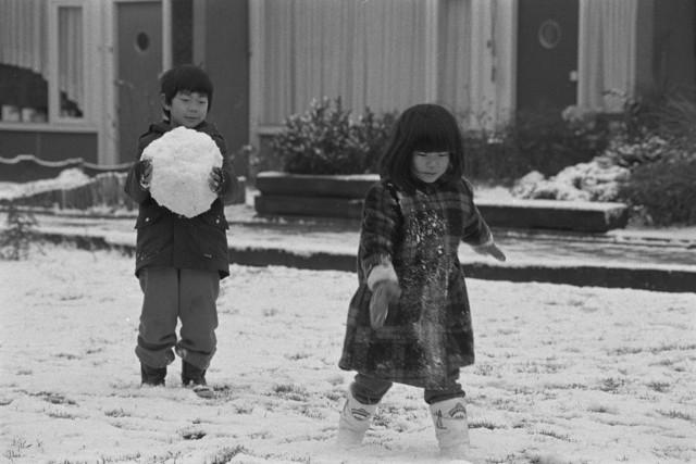 TLB023002484_002 - Deze kinderen zijn in de sneeuw aan het spelen