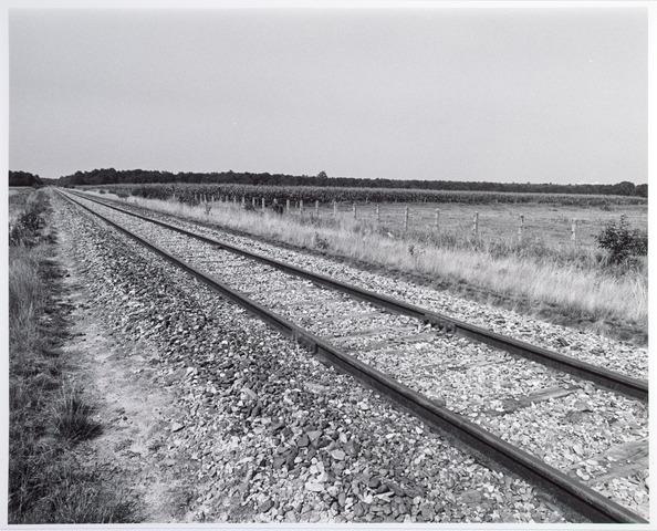 015327 - Landschap. Voormalige spoorlijn Tilburg -  Turnhout, in de volksmond ´Bels lijntje´ genoemd. Op Nederlands grondgebied is het thans een fietspad