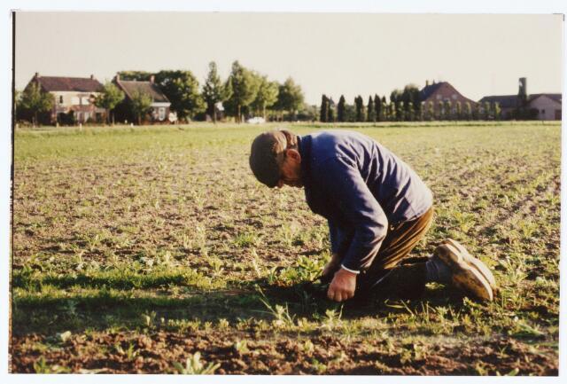 063707 - Bieten op één-zetten door een boer aan de Enschotsebaan