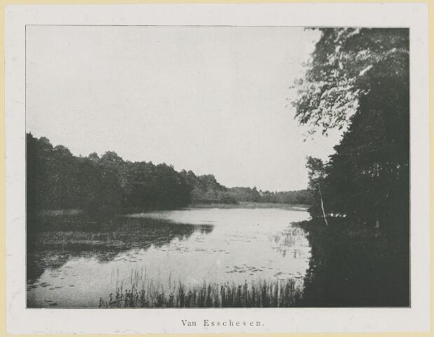 075371 - Serie ansichten over de Oisterwijkse Vennen.  Ven: Van Esscheven.